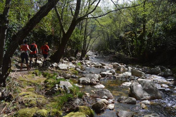 Pohádkovým údolím potoka