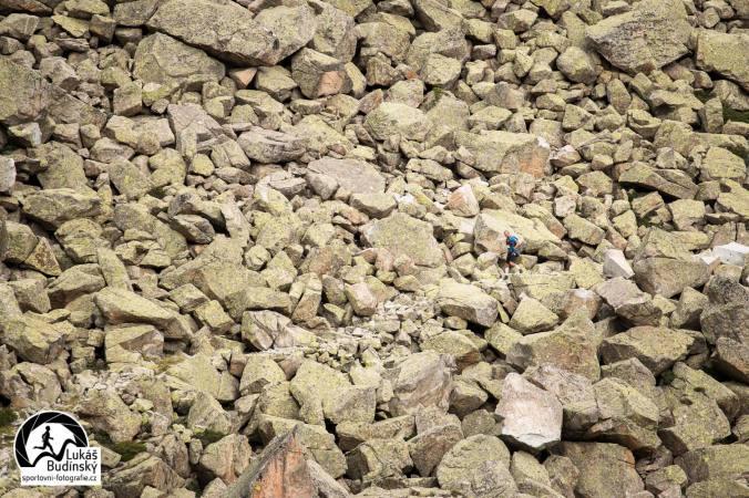 Pepr mizí v kamení (Foto: Lukáš Budínský)